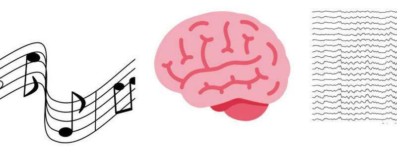 دراسة: الموسيقى تأسر المستمعين وتزامن موجات الدماغ