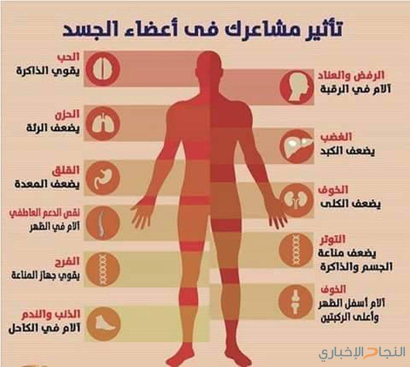كيف تؤثر مشاعرك على أعضاء جسمك؟