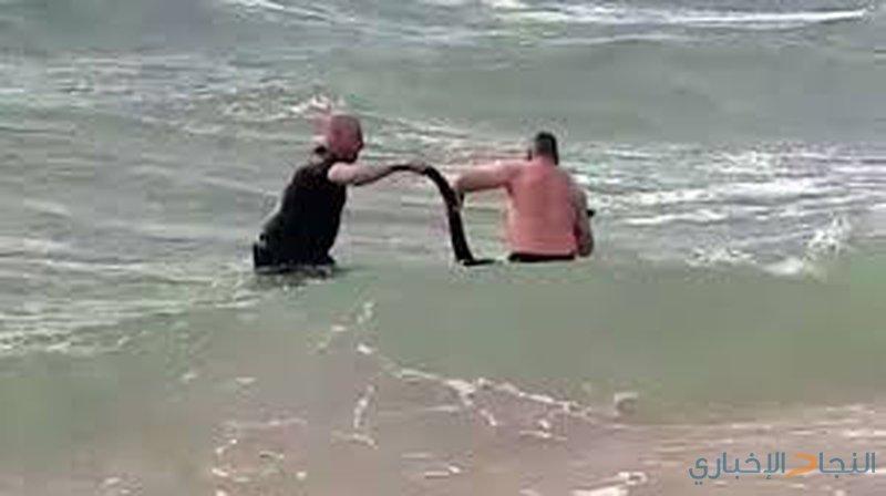 """الشرطة الأسترالية تنقذ كنغرا حاول """"الانتحار""""!"""