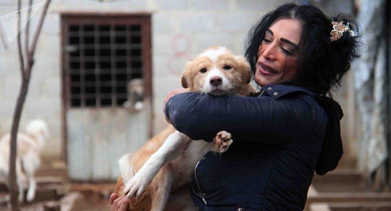 بالصور... دمشقية تأوي آلاف الكلاب والقطط الضالة