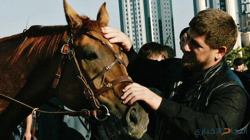 حصان الشيشان يتفوق على حصان دبي