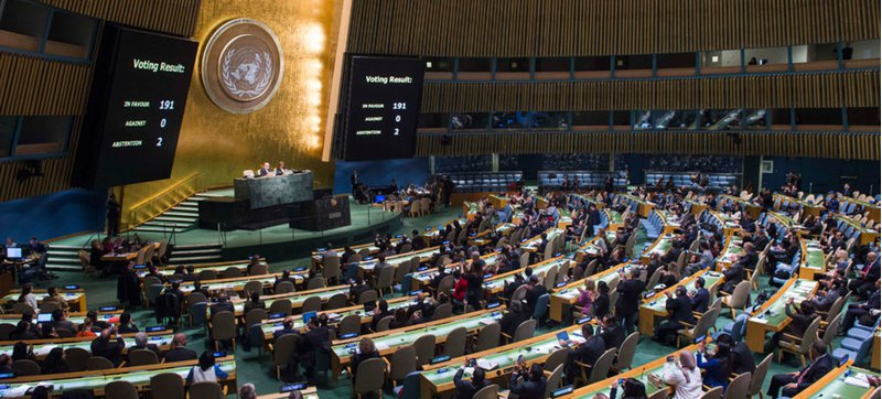 الجمعية العامة للأمم المتحدة: النساء يمثلن نصف سكان العالم