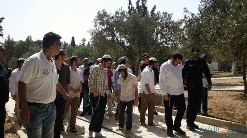 مجموعة من المستوطنين يقتحمون باحات المسجد الأقصى