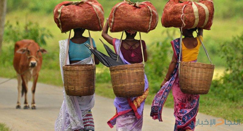 الهند تتخطى المعدلات العالمية لحالات الإجهاض