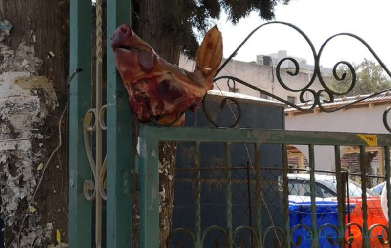 مجهولون يعلّقون رأس خنزير على مدخل كنيس يهودي