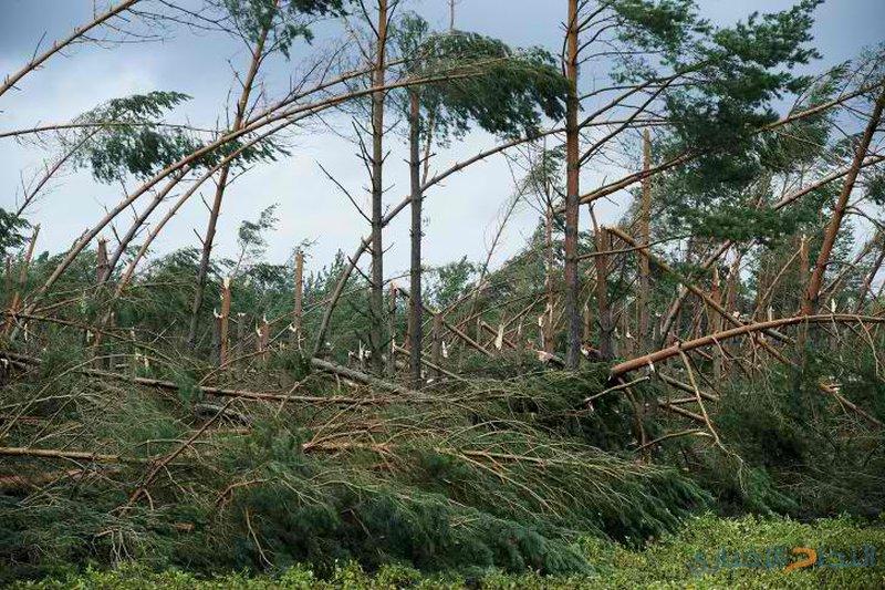 مقتل خمسة اشخاص  جراء العواصف في بولندا