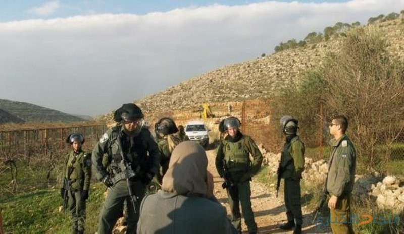 الاحتلال يخطر بإخلاء أراضي زراعية شرق يطا