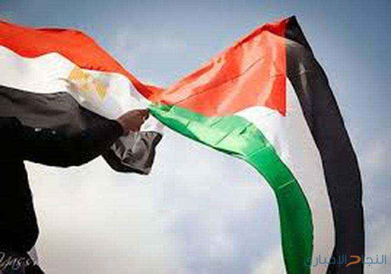 قنصل مصر: التهدئة مع إسرائيل لن تحل مكان المصالحة