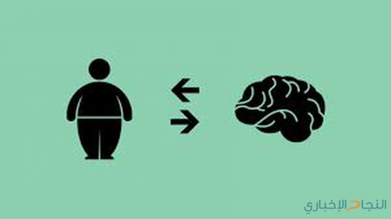 كيف تدمر السمنة الدماغ؟