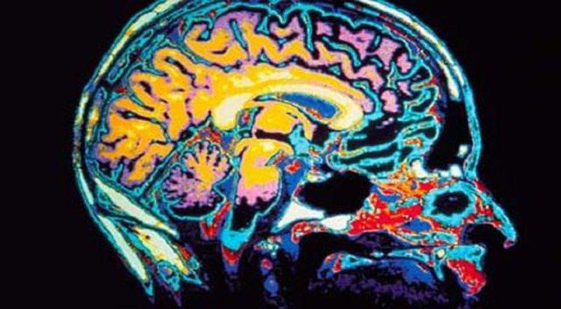 دراسة: الدماغ هو من يتحكم بسلوك ومشاعر الأهل تجاه أبنائهم