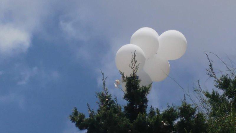 """الاحتلال يزعم سقوط عدد من البالونات الحارقة في مستوطنة """"نتيفوت"""""""
