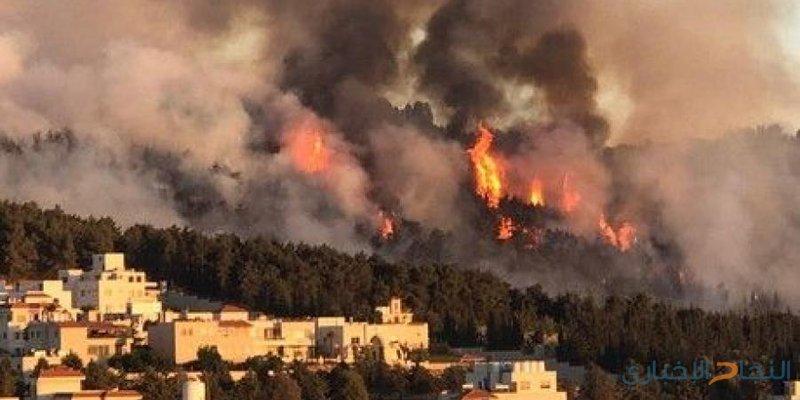 العاهل الأردني يشارك في إخماد حريق بمنطقة الكمالية (فيديو)